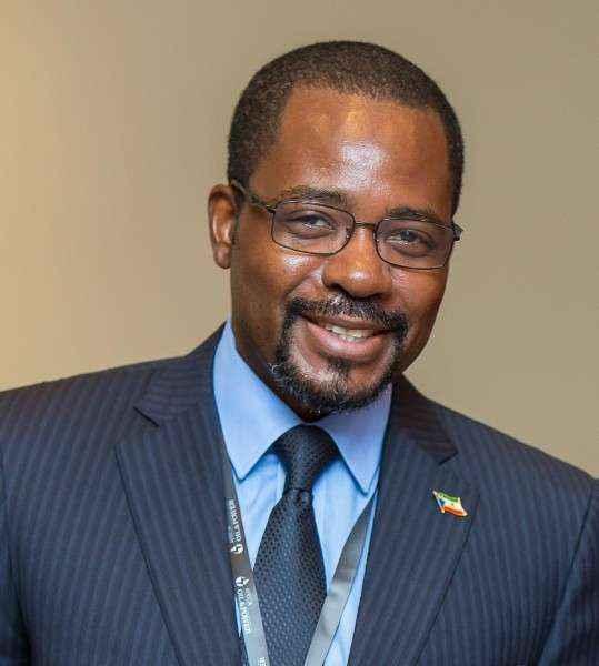 Guinea Ecuatorial mantiene conversaciones con la African Energy Chamber abordando las novedades sobre proyectos energéticos durante Covid 19